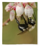 Bumble Bee And Blueberry Blossoms Fleece Blanket