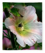 Bumble Bee Pollen Collector  Fleece Blanket