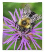 Bumblebee On A Purple Flower Fleece Blanket