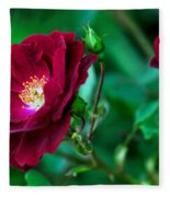 Burgundy Iceberg Rose Fleece Blanket