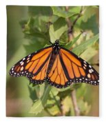 Butterfly - Monarch - Resting Fleece Blanket