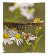 Butterfly 3319 Fleece Blanket