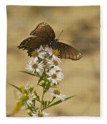Butterfly 3321 Fleece Blanket