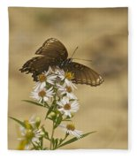 Butterfly 3322 Fleece Blanket