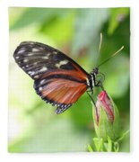 Butterfly At Rest Fleece Blanket