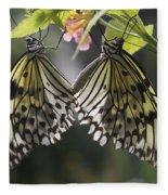 Butterfly Duo Fleece Blanket