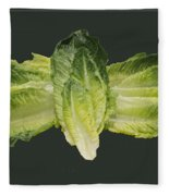 Butterfly Lettuce Fleece Blanket