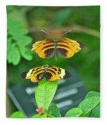 Butterfly Lovers Fleece Blanket