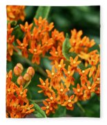 Butterfly Milkweed Fleece Blanket