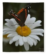 Butterfly On Shasta Daisy Fleece Blanket