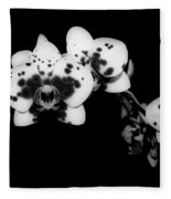 Butterfly Orchid In The Shadows Fleece Blanket