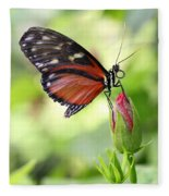 Butterfly Resting Fleece Blanket