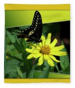 Butterfly Swallowtail 01 16 By 20 Fleece Blanket