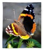 Butterfly Tai Chi On Lantana Luscious Lemonade Fleece Blanket