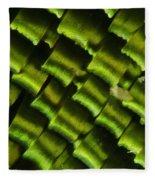 Butterfly Wing Scales Fleece Blanket
