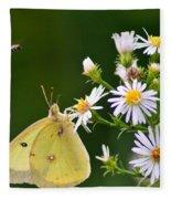 Buzzed Butterfly Fleece Blanket