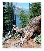 By Jenny Lake Fleece Blanket