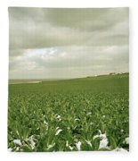 Kent In England Fleece Blanket