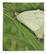 Cabbage White Butterflies 5267 Fleece Blanket