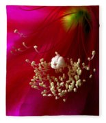 Cactus Flower Interior Fleece Blanket