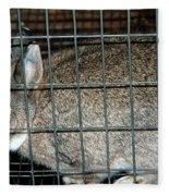 Caged Rabbit Fleece Blanket