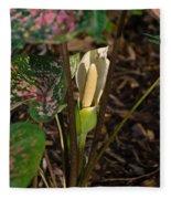 Caladium Flower 2 Fleece Blanket