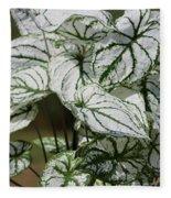 Caladium Named White Christmas Fleece Blanket