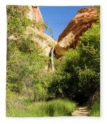 Calf Creek Falls Canyon Fleece Blanket