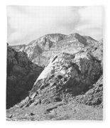Calico Basin Fleece Blanket