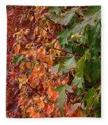 Calico By Nature Fleece Blanket