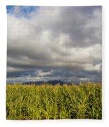 California Cornfield Fleece Blanket