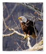 Calling For His Mate Fleece Blanket