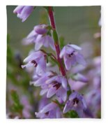 Calluna Vulgaris 4  Fleece Blanket