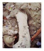 Camarasaurus Femur Covered In Burlap Fleece Blanket