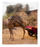 Camel Yoked To A Decorated Cart Meant For Carrying Passengers In India Fleece Blanket