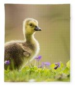 Canada Goose Baby Fleece Blanket