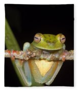 Canal Zone Tree Frog Fleece Blanket