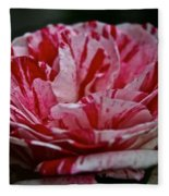 Candy Cane Rose Fleece Blanket