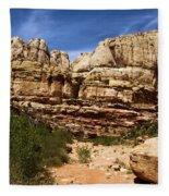 Canyon Castle Fleece Blanket