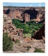 Canyon De Chelly Fleece Blanket
