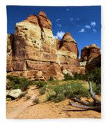 Canyonlands Chesler Park Fleece Blanket