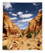 Capitol Reef Cohab Canyon Fleece Blanket