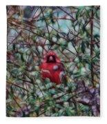 Cardinal Feb 2012 Fleece Blanket