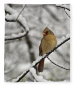 Cardinal Female 3652 Fleece Blanket