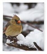 Cardinal Female 3679 Fleece Blanket