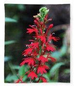 Cardinal Flower Fleece Blanket
