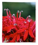Cardinal Flower Close Up Fleece Blanket