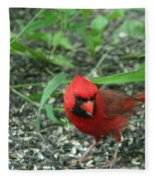 Cardinal In Springtime Fleece Blanket