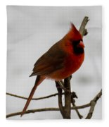 Cardinal In The Snow Fleece Blanket