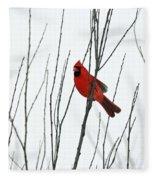 Cardinal In Willow  Fleece Blanket
